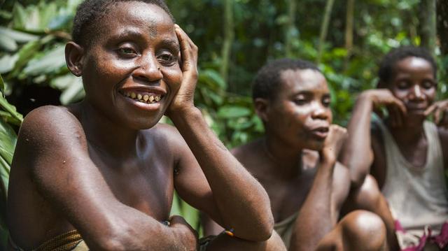En Centrafrique, le mode de vie des pygmées fait craindre une augmentation des cas de coronavirus