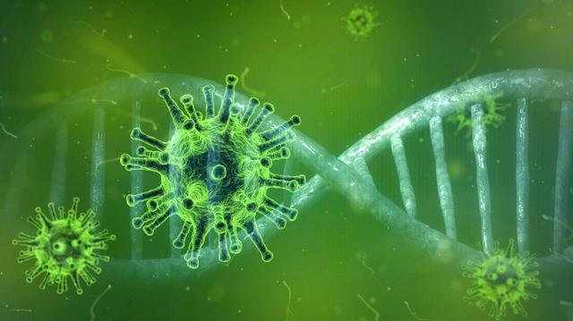 Coronavirus Covid-19 : Et si ce traitement contre le paludisme le soignait ?