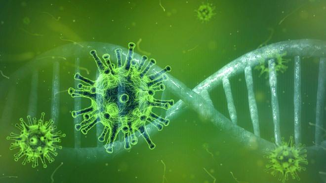 Pour le moment, aucun cas confirmé de coronavirus n'a été identifié au Cameroun (Illustration)