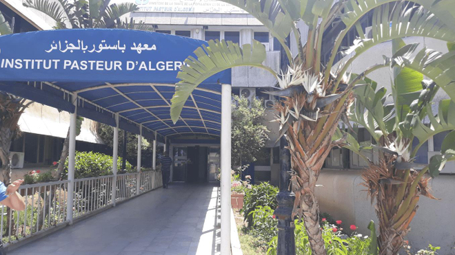 L'institut Pasteur est le centre de référence pour tester le nouveau coronavirus en Algérie (Illustration)