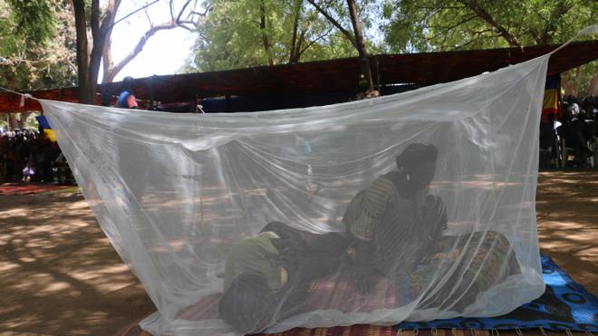 Les moustiquaires Milda sont le principal rempart contre le paludisme (photo d'illustration)