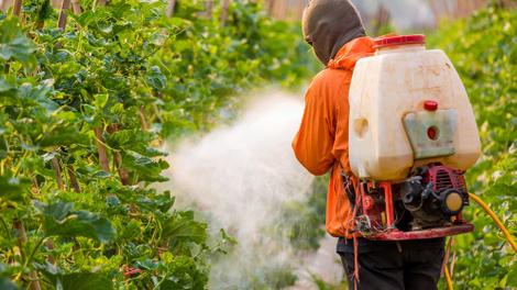 La France vendra moins de pesticides poisons à l'Afrique !