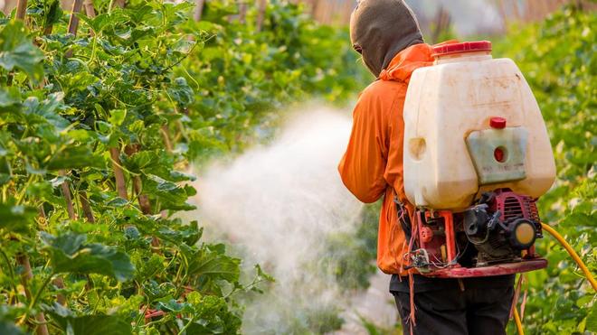 La France ne devrait plus vendre des pesticides aux pays africains