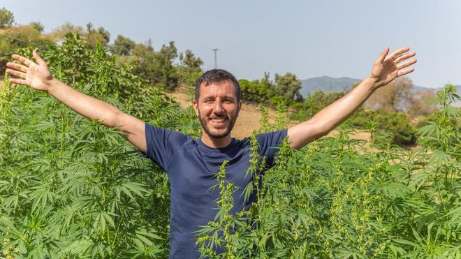 Au Maroc, plusieurs personnes plaident pour la légalisation du cannabis (Illustration)