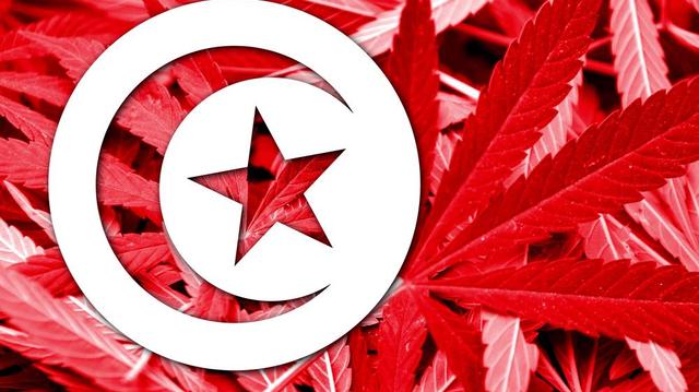 Tunisie : les autorités convoquent les médecins qui auraient fumé un joint au travail