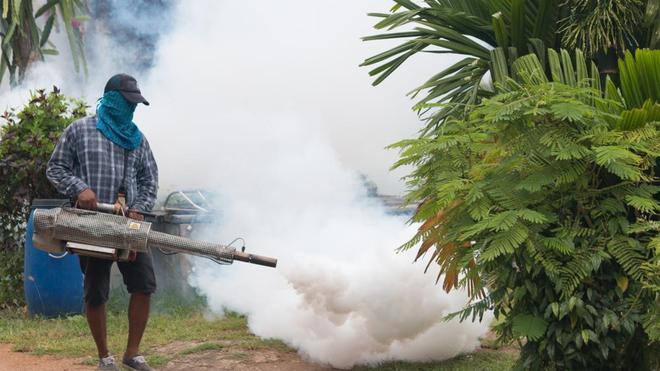 La campagne de démoustication est prévue jusqu'au 9 juillet en Côte d'Ivoire (photo d'illustration)