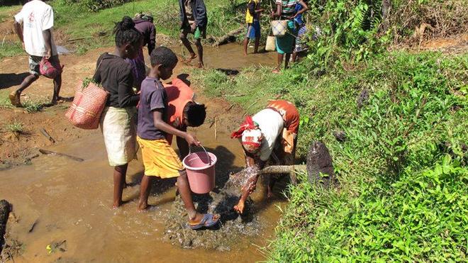 A Madagascar, 92% de la population serait touchée par la bilharzioze
