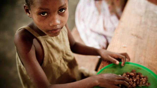 Pour lutter contre la faim, le Niger veut investir dans l'agriculture !