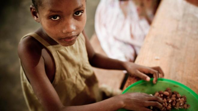 Quand le Niger rêve d'autosuffisance alimentaire !
