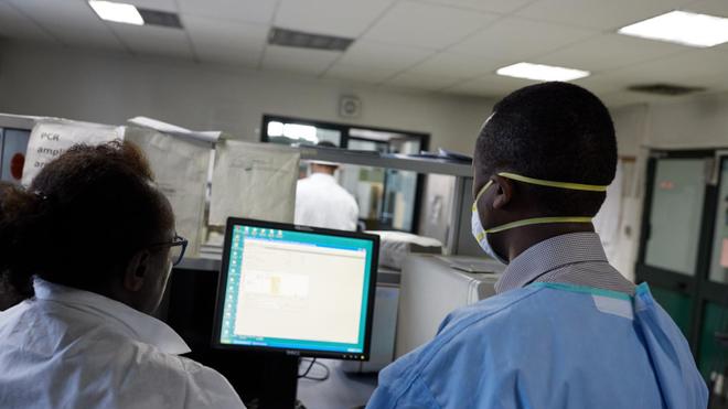 L'OMS déclare la fin de l'épisode de virus de Marburg en Guinée