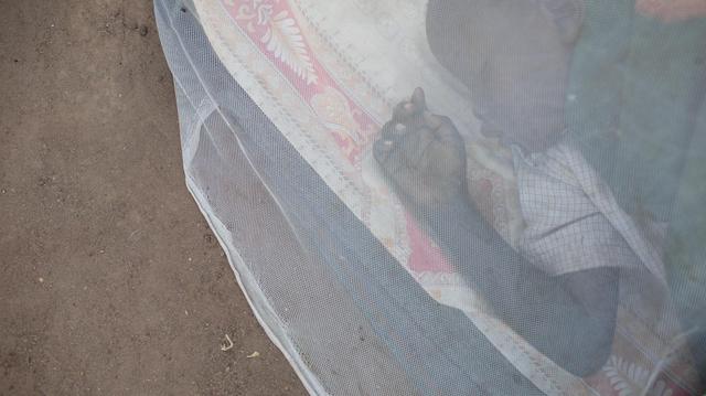 Cameroun : Le paludisme s'en prend surtout aux enfants
