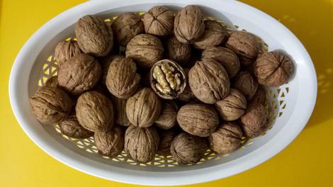 La noix, le fruit à coque aux mille vertus