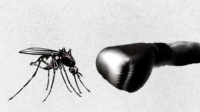 Le Sénégal renforce son dispositif de diagnostic du paludisme