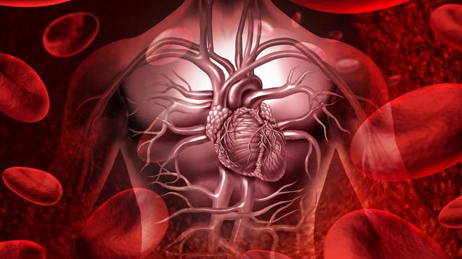 Cinq règles d'or pour prendre soin de son coeur (photo d'illustration)