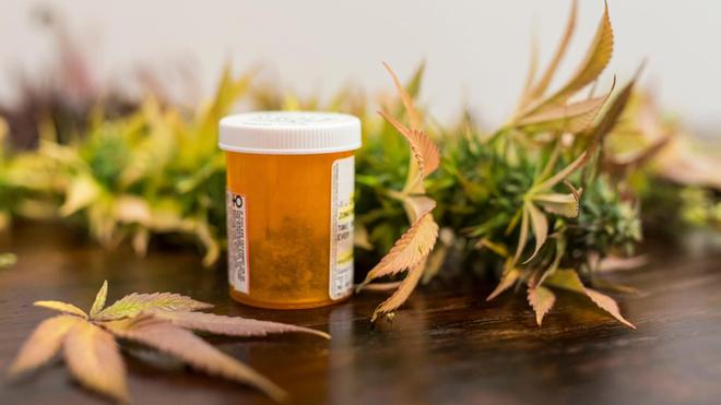 La France va expérimenter l'usage médical du cannabis