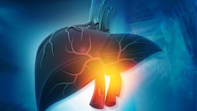 Les hépatites sont des inflammations du foie qui sont souvent causée par des virus très dangereux