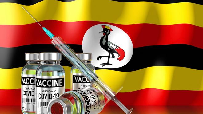 Des médecins mal intentionnés ont trompé des patients en leur injectant de faux vaccins contre le Covid-19 (Image d'illustration)
