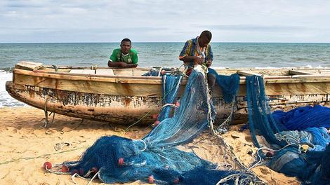 Les pêcheurs sénégalais reprennent le travail malgré leur maladie mystère