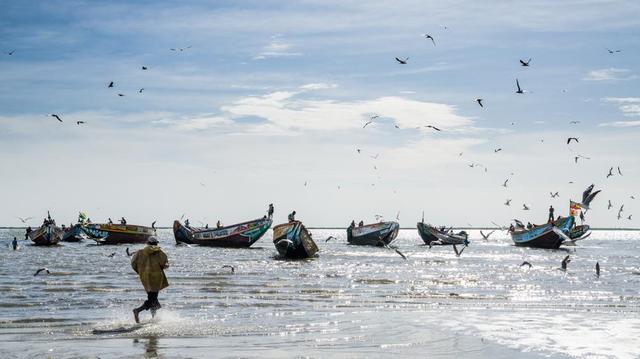 Au Sénégal, une mystérieuse maladie attaque les pêcheurs