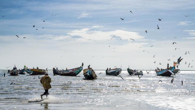 Une mystérieuse maladie frappe les pêcheurs sénégalais qui reviennent de mer