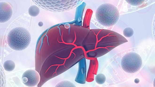 L'hépatite virale est une inflammation du foie à l'origine de différentes pathologies, dont le cancer du foie (photo d'illustration)