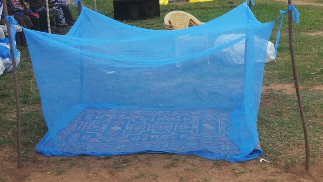Une moustiquaire imprégnée d'insecticide pour lutter contre le paludisme