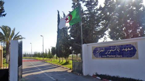 Coronavirus en Algérie : vers une deuxième vague de contaminations ?